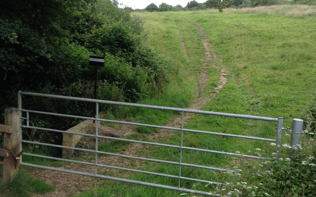 Darkey Lane footpath update