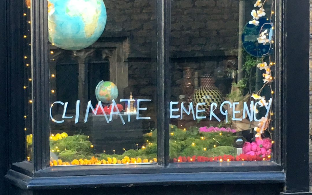Bruton Climate Emergency